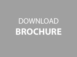 brochure-temp